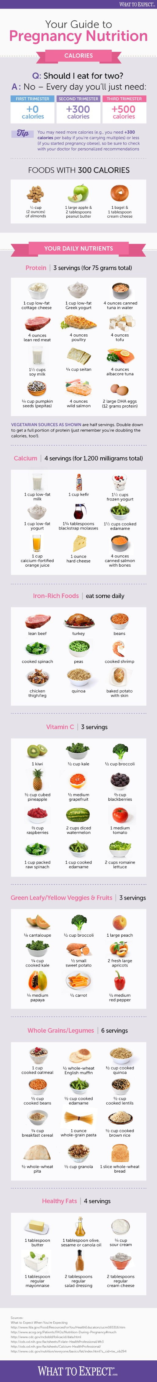 Pregnancy Nutrition 101 Infographic | What to Expect